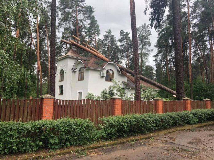 Буря в Даугавпилсе 27.06.2019. Фото со страницы на фейсбуке И.Прелатова