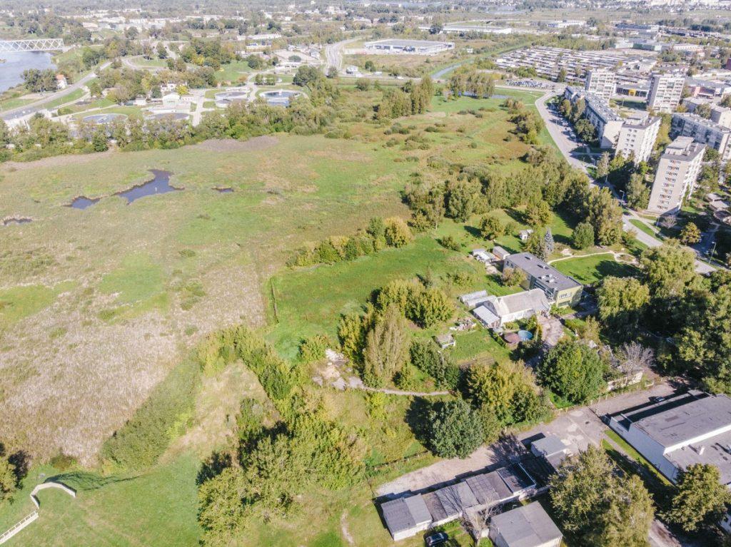 Территория, на которой будет создан болотарий. Фото с дрона Евгений Ратков
