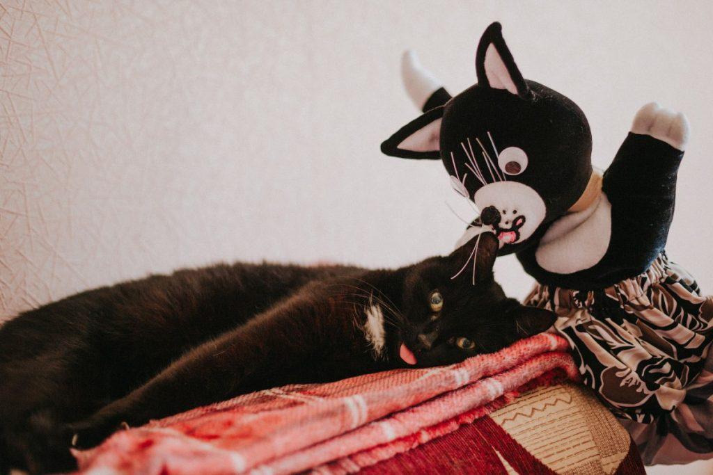 Коты кукольницы Галины Природиной