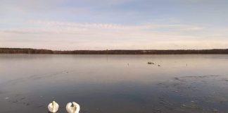 Озеро Большие Стропы в Даугавпилсе. 15 февраля 2020 года. Фото: Светлана Мейнарте