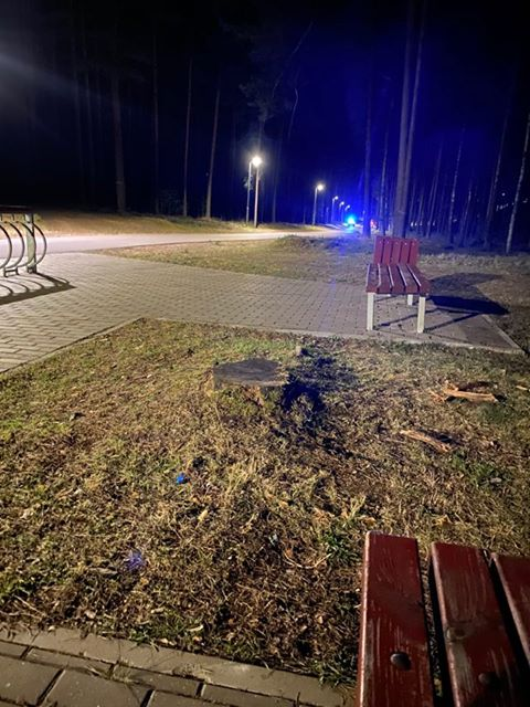 Фото Йоланты Римши, сделанное недалеко от места происшествия. Стропская трасса в Даугавпилсе, 18 марта 2020 года