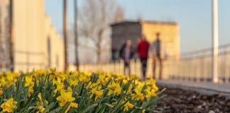 Даугавпилс. 7 апреля 2020 года. Фото: Daugavpils pilsēta