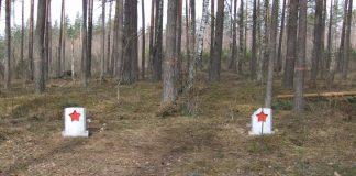 Памятные плиты в лесу в Науенской волости. Фото: dinaburg.ru