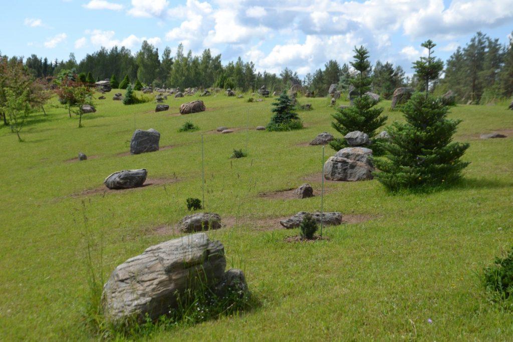 Парк камней в приусадебном хозяйстве Ezerlīči. Фото: Елена Иванцова