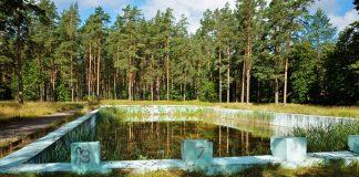 Бывший открытый бассейн в Стропах. 8 июля 2020 года. Фото: Ирина Маскаленко