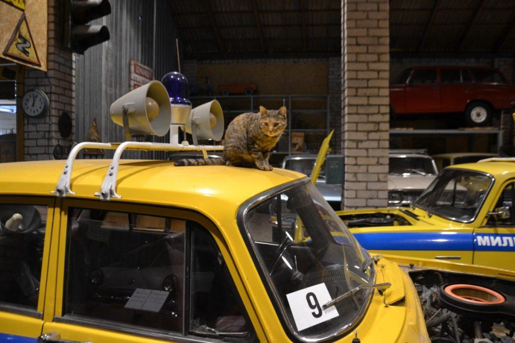 Автомобиль из коллекции Александра Кашерина. Фото: Елена Иванцова