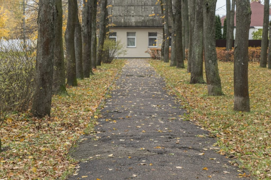 Парк в Гайке (между улицами Тиргус и Видус в Даугавпилсе). Октябрь 2020 года. Фото: Евгений Ратков