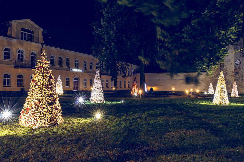 Фото: PIKC DDMV Saules skola