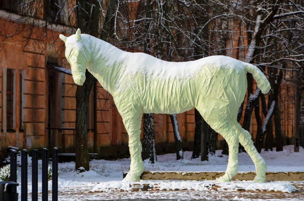 Белая лошадь в Даугавпилсской крепости. Фото: Daugavpils cietoksnis