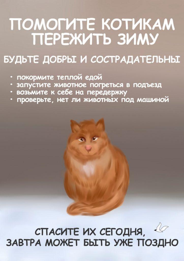 Помогите котикам! Рисунок Насти Гавриленко