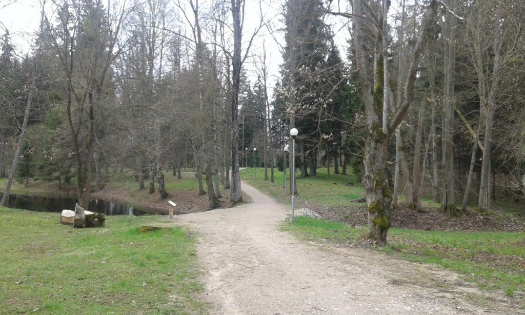 Парк возле Лузнавского поместья. Фото: Елена Иванцова