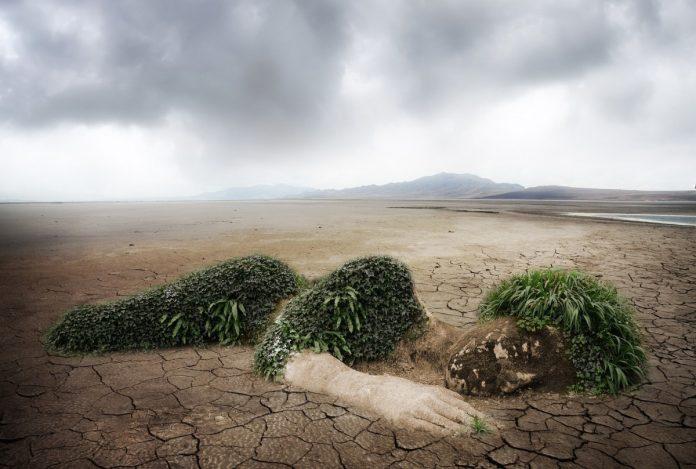 Экология. Изображение Comfreak с сайта Pixabay
