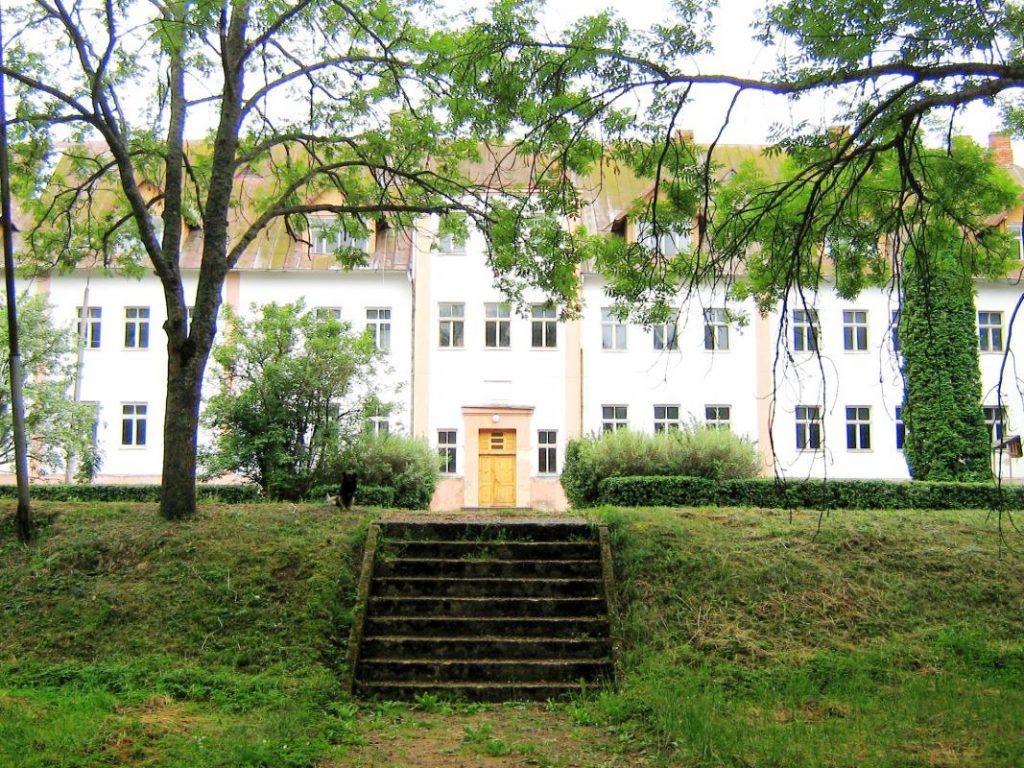 Здание бывшего Вишкского техникума