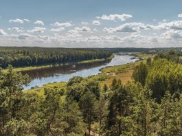 Даугавас локи Фото: Евгений Ратков