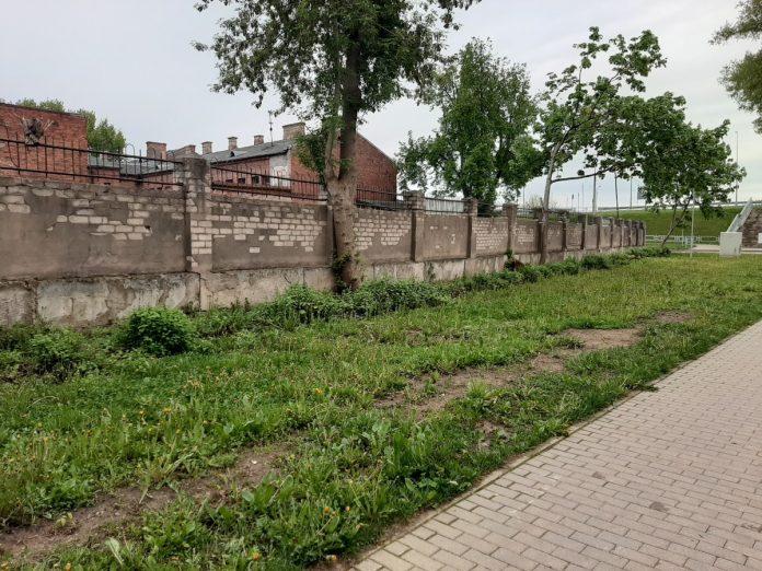 Так теперь выглядит место, где когда-то благоухали кусты жасмина. Май 2021 года. Фото: Елена Чурсина