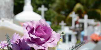 Кладбище. Иллюстративное изображение vlanka с сайта Pixabay