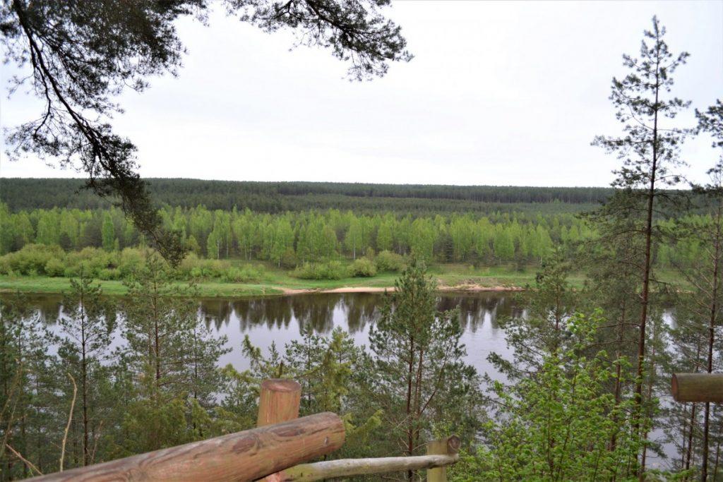 Новая пешеходная тропа на территории природного парка «Daugavas loki». Фото: Daugavpils novada pašvaldības tūrisma aģentūra TAKA