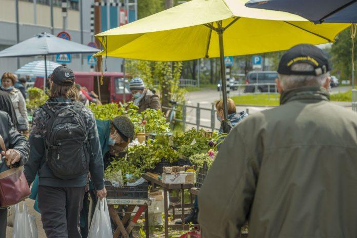 Рынок на Кожзаводе в Даугавпилсе. 22 мая 2021 года. Фото: Евгений Ратков