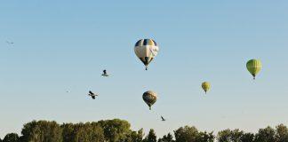 Воздушные шары над Даугавпилсом. Фото: Ирина Маскаленко