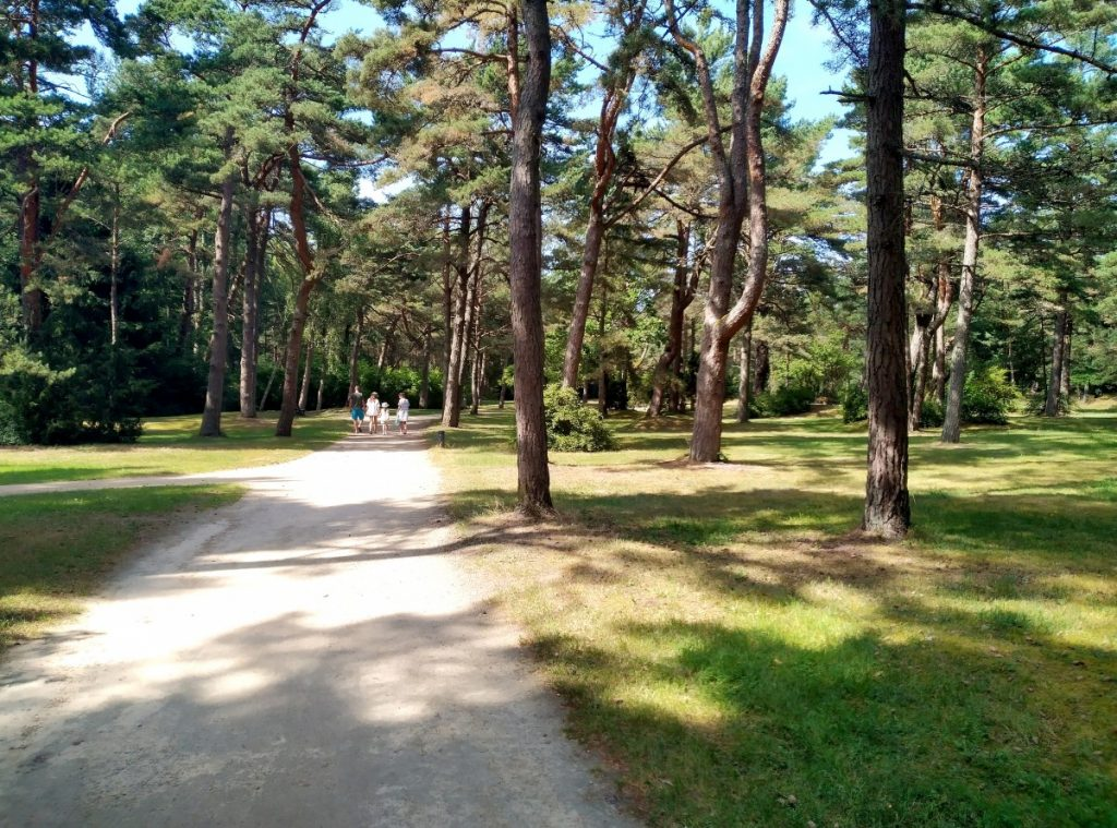 Парк Бируте в Паланге. Фото: Елена Иванцова
