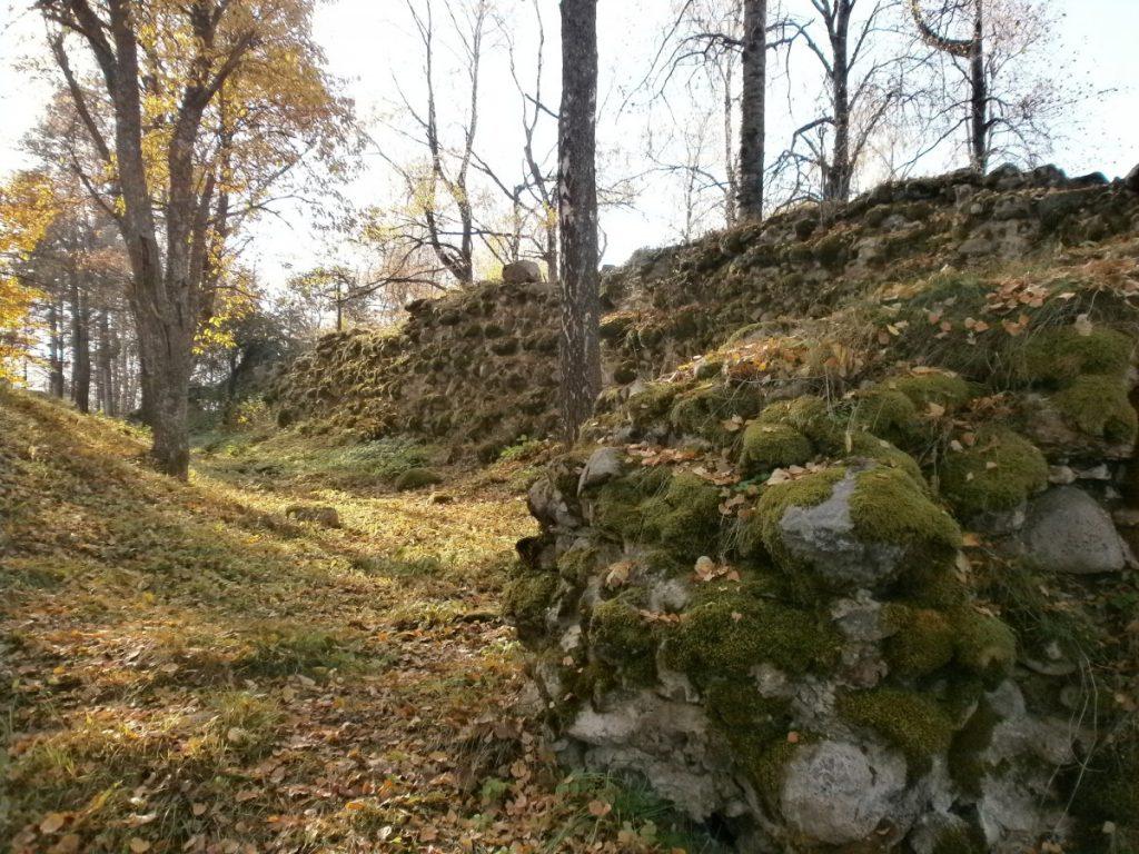 Маконькалнс и руины замка Волкенберг. Фото: mantojums.lv