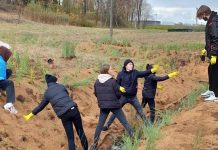 Ученики и учителя Резекне создали самую большую клумбу в городе и дождевые сады. Фото: rezekne.lv